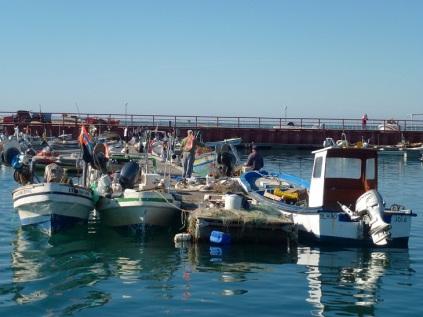 Armona island fishing