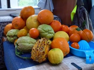 Free fruit for breakfast
