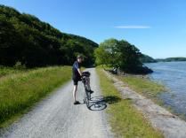 On the Mawddach Trail