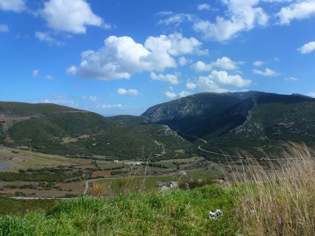 Road to Delphi (6)