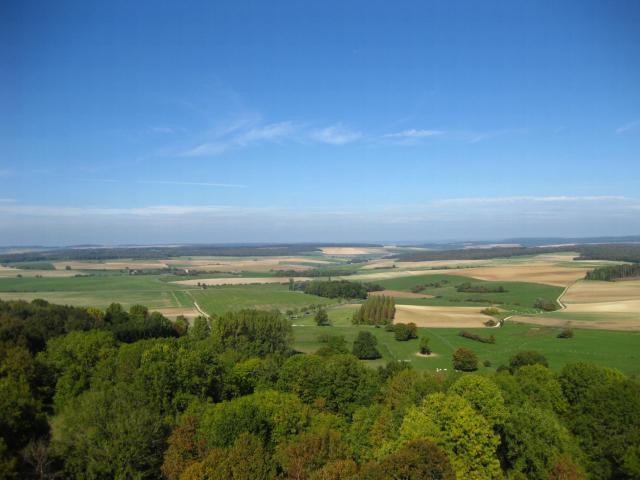 verdun fields